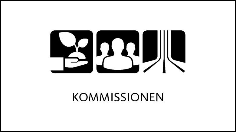 Die Kommissionen